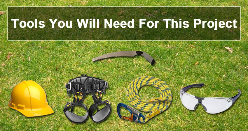 Tree Pruning Tools You Will Need For This Project