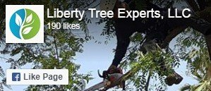 Liberty Tree Experts - Facebook Page
