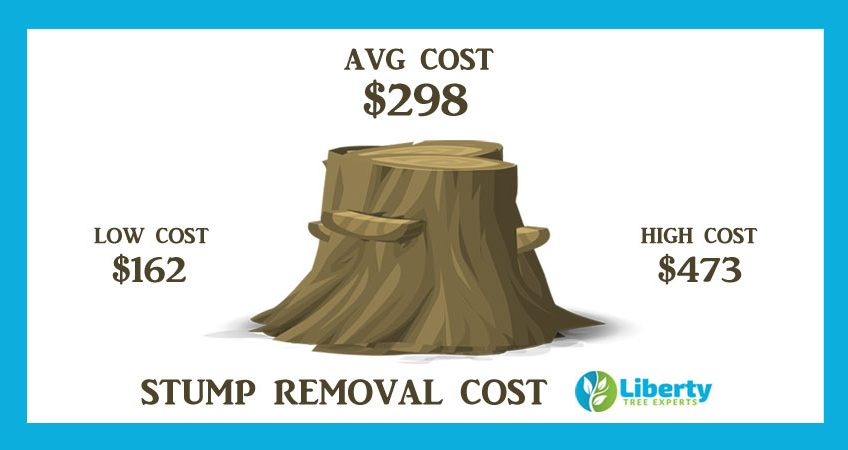 Tree Stump Removal & Grinding Cost