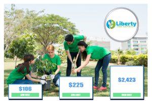 Tree Planting Cost